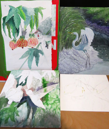bird paintings in progress