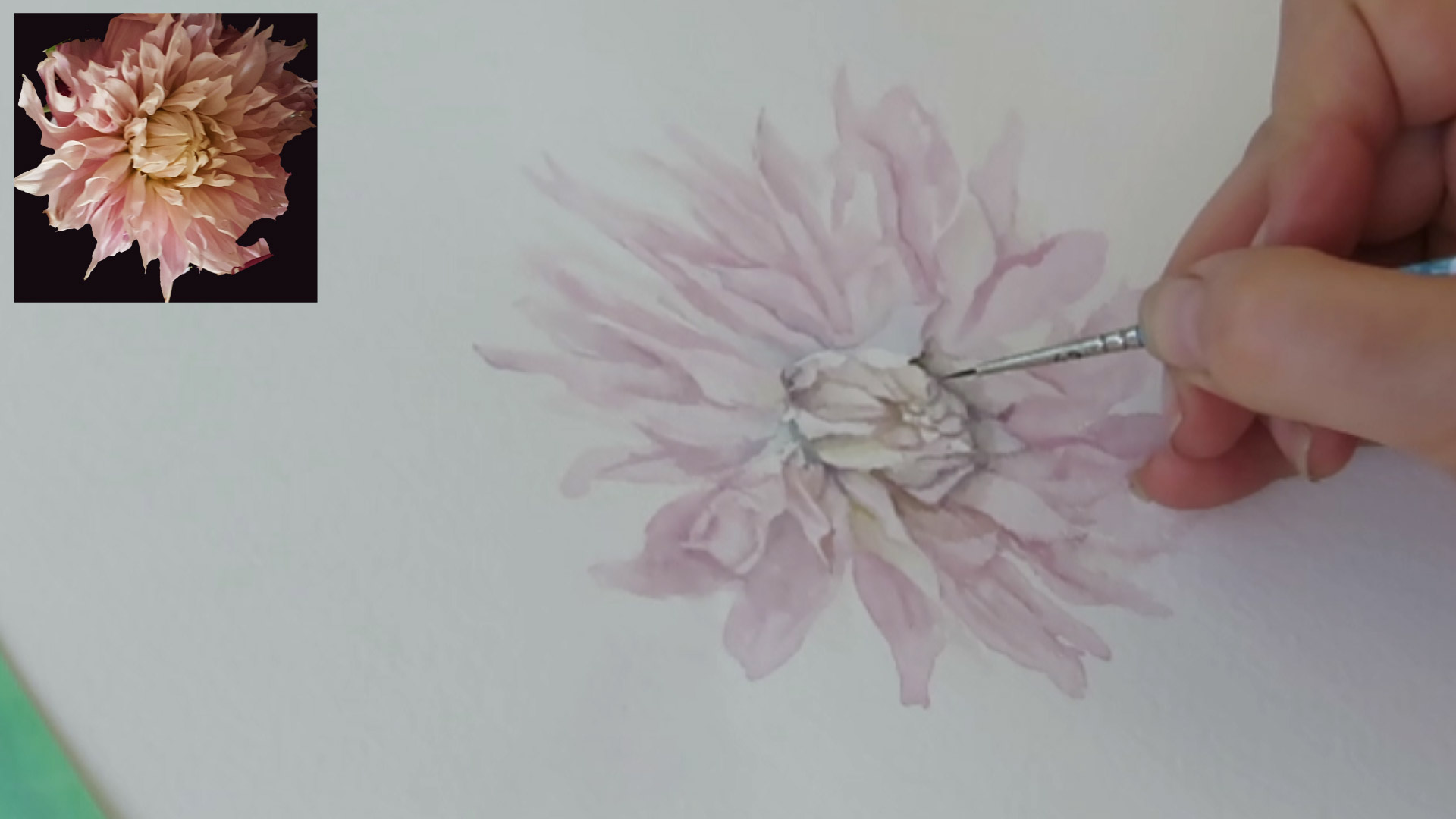painting a dahlia in watercolor