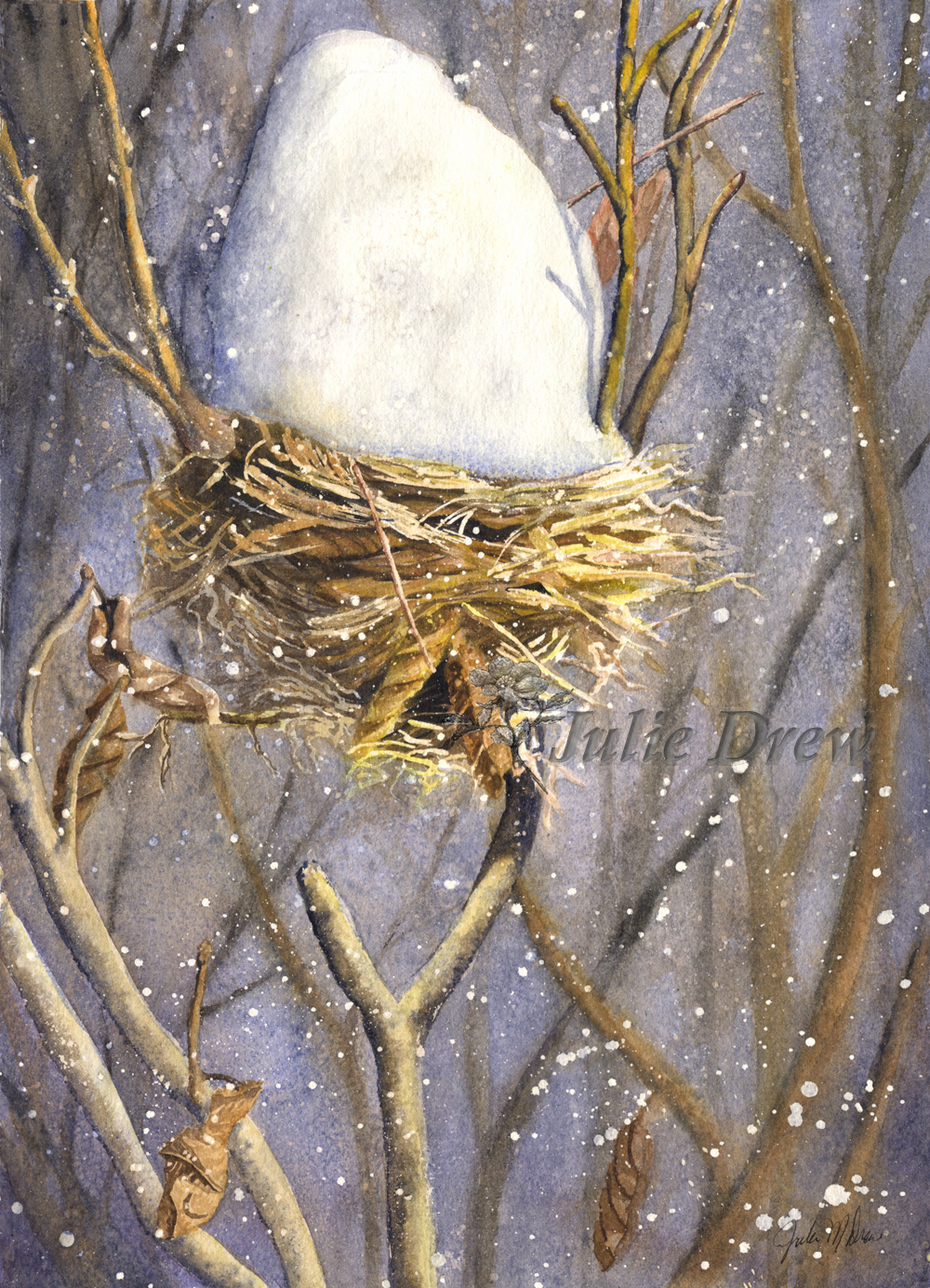 Empty Nest, watercolor by Julie Drew