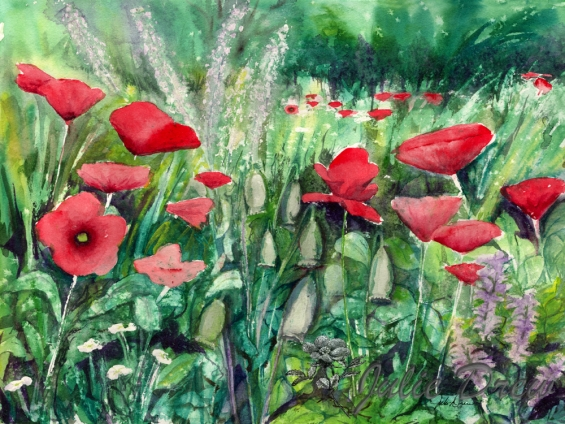 Wild Poppies, watercolor, Floral Series