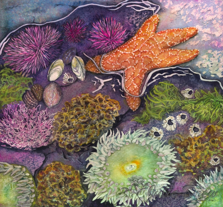 Wonders of the Sea, Watercolor Painting